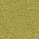 ECP29 Cedro Synthetic Leather