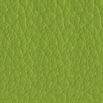 ECP17 Verde Synthetic Leather