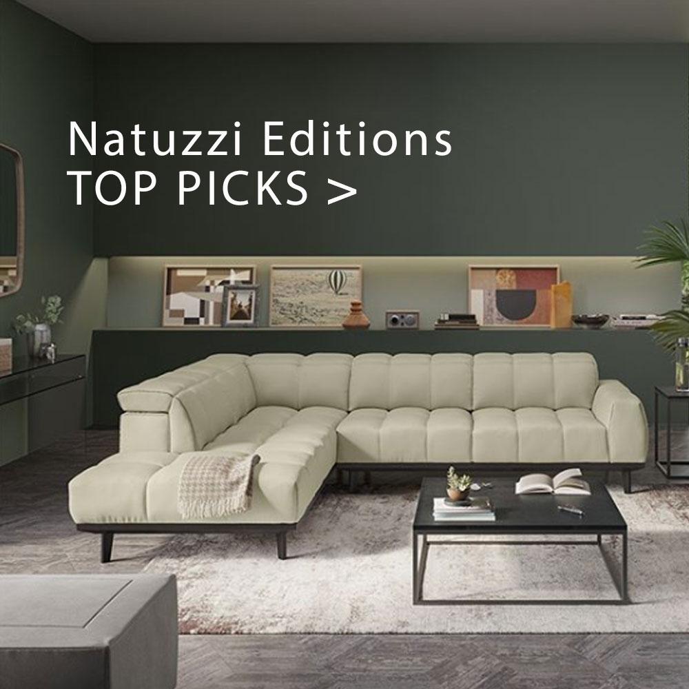New Natuzzi Picks