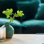 Colorado Interior 4seater Lario 1402 Dark Green Space Coffee Table 150x50 H38 Oak Top Black Leg 6
